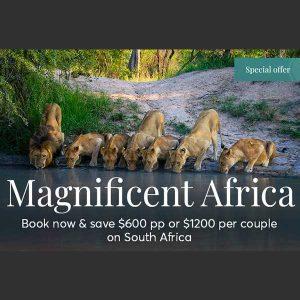 Travel Rewards promo Magnificient Africa